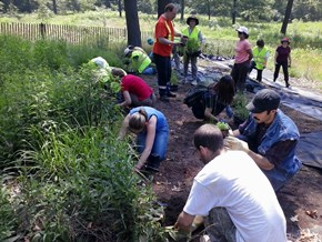 Highpark Stewards Fall Planting