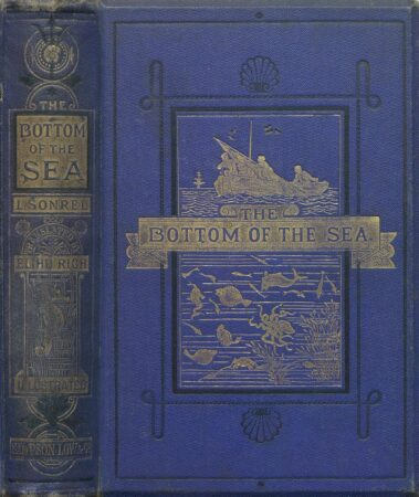 THE BOTTOM OF THE SEA BY LÉON SONREL (1875)