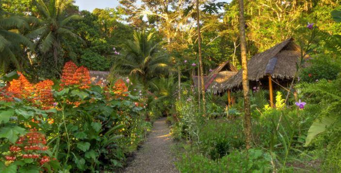 Pijiba Lodge Colombia