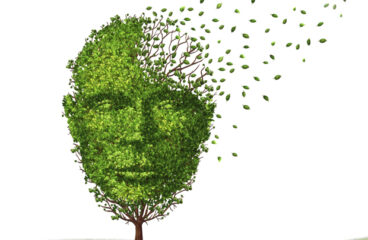 What You Should Know About Your Memory