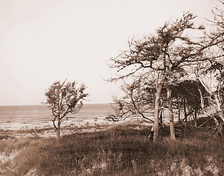 High Jinks on 7 Mile Island 1885