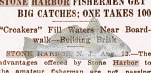 Stone Harbor Museum Minute #22 Fishing Tales