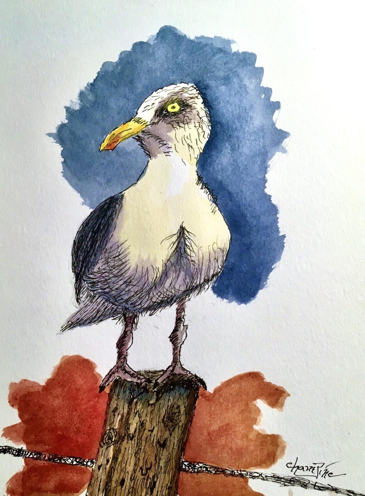 #1 – Sea Gull – Frank Champine – Age 77