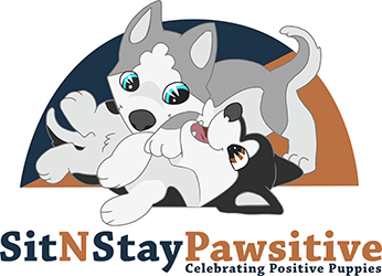 Sit n Stay Pawsitive