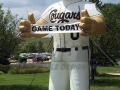 Kane County Cougars Mascot Inflatable