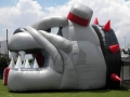 Inflatable Dog Tunnel