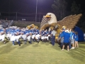 Inflatable Eagle Football Field