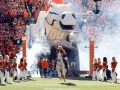Denver Broncos Inflatable Tunnel