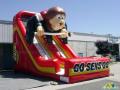 Ottawa Senators Inflatable Slide