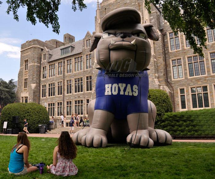 georgetown custom inflatable bulldog mascot