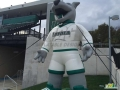 loyola custom inflatable wolf mascot
