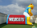 Anthony ISD Inflatable Wildcat Entryway