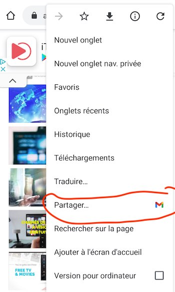 google chrome flag partage