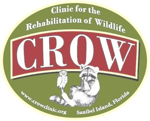 CROW (Clinic for the Rehabilitation Of Wildlife)
