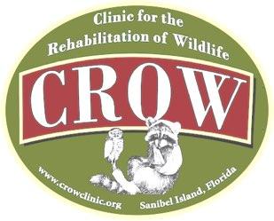 CROW (Clinic for the Rehabilitation Of Wildlife)
