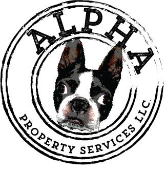 Alpha Property Services LLC
