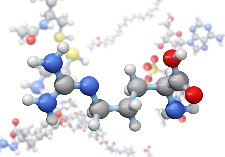 amino acid reduces sickle crisis