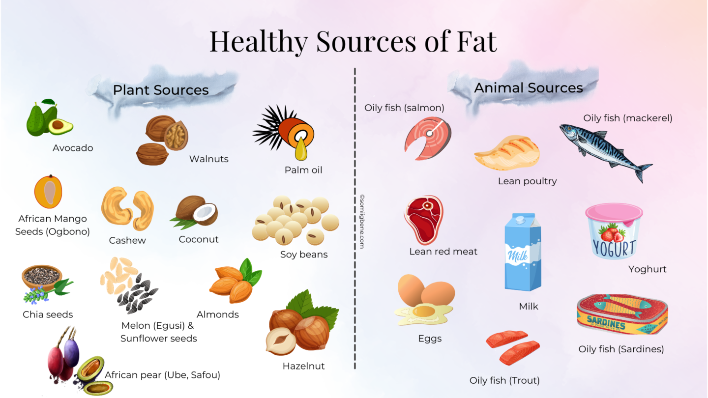 healthy sources of fat | somiigbene.com