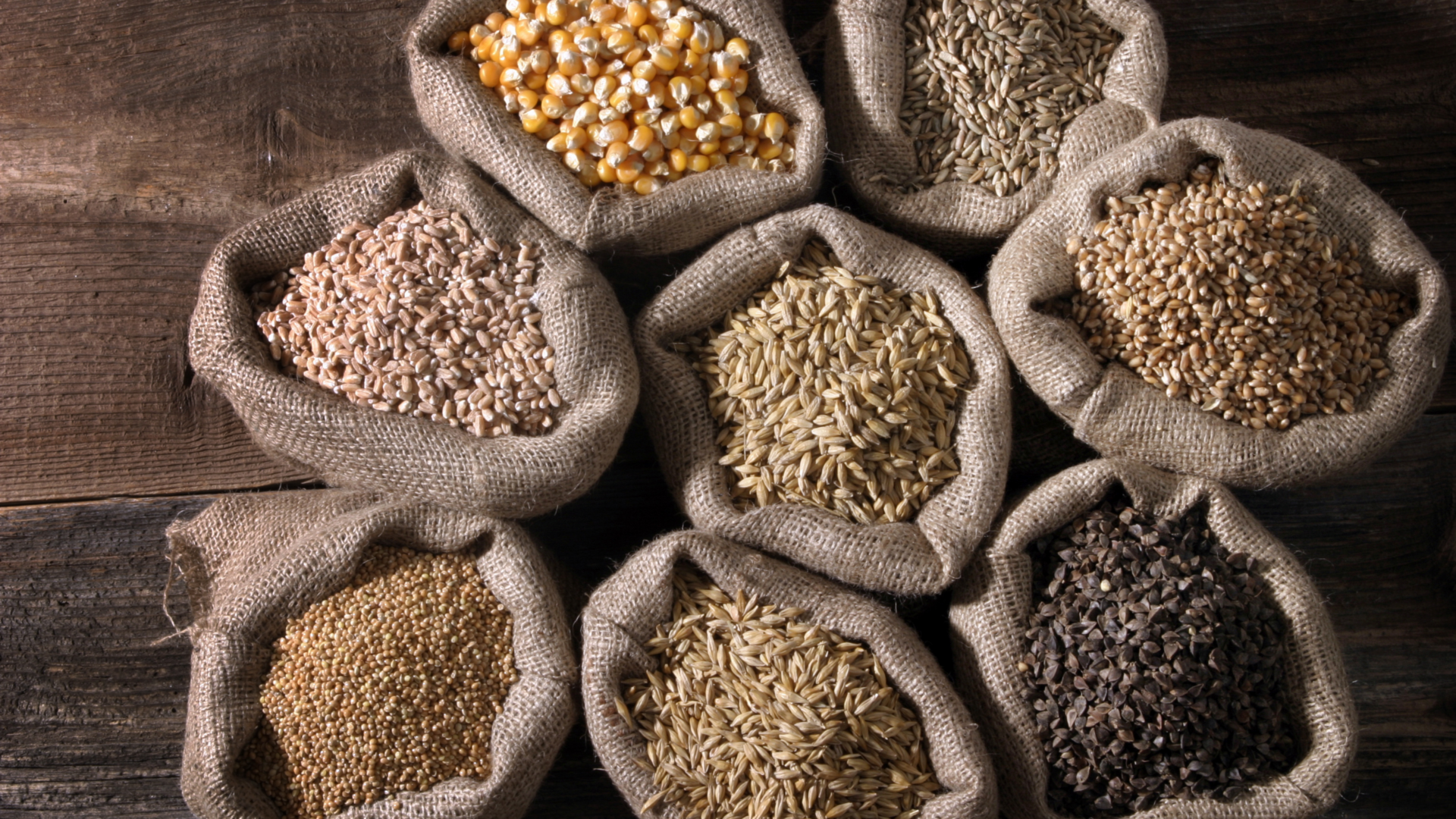 What you need to know about grains blog