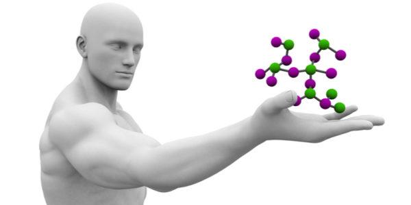 the life of a molecule