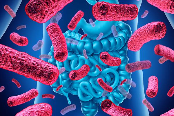 Kaleido Bioscience Microbiome Biotech Stock
