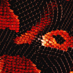 Wisconsin Hydrographics snake skin film WH-005