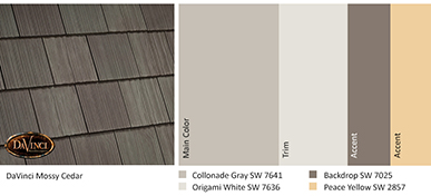 Color Ideas for DaVinci Roofscapes Mossy Cedar Shakes