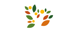 CFL_logo W-18