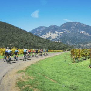 Napa & Sonoma Wine Country Bike Tour photo of people on bikes with mountains in background