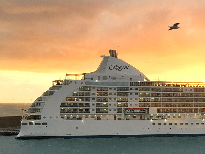 Regent ship sailing at sunset with bird flying over ship