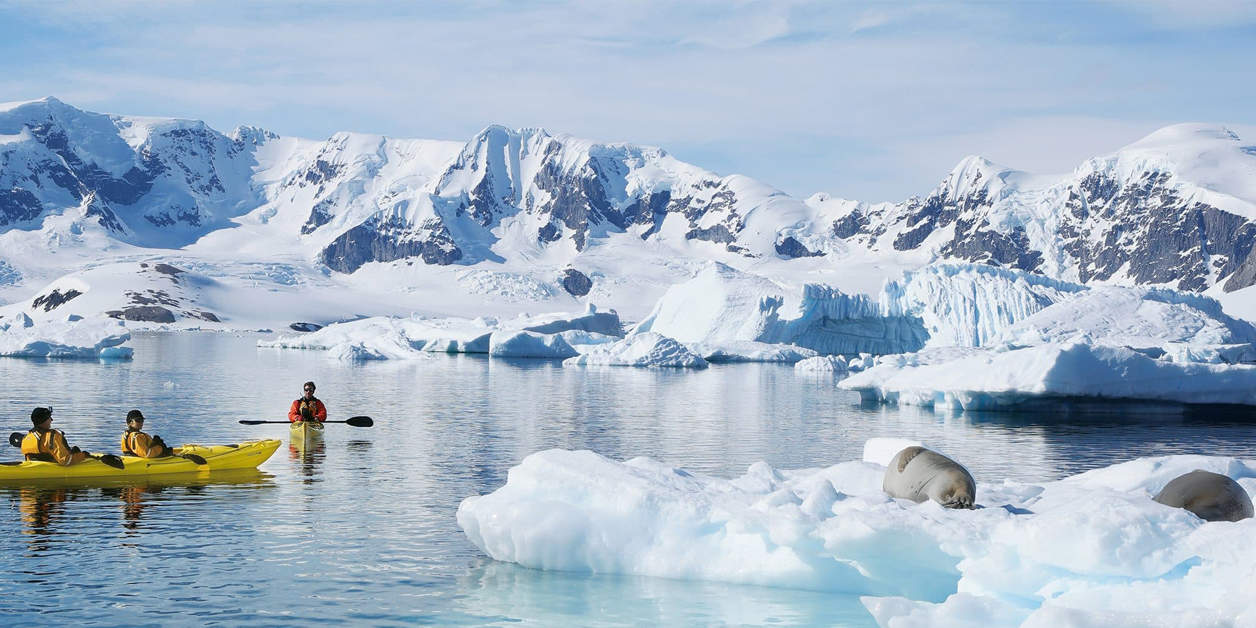 Kayakers in Antarctica with an iceberg and sea lions to the right.