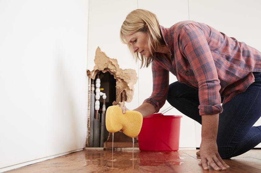 mount pleasant emergency plumber