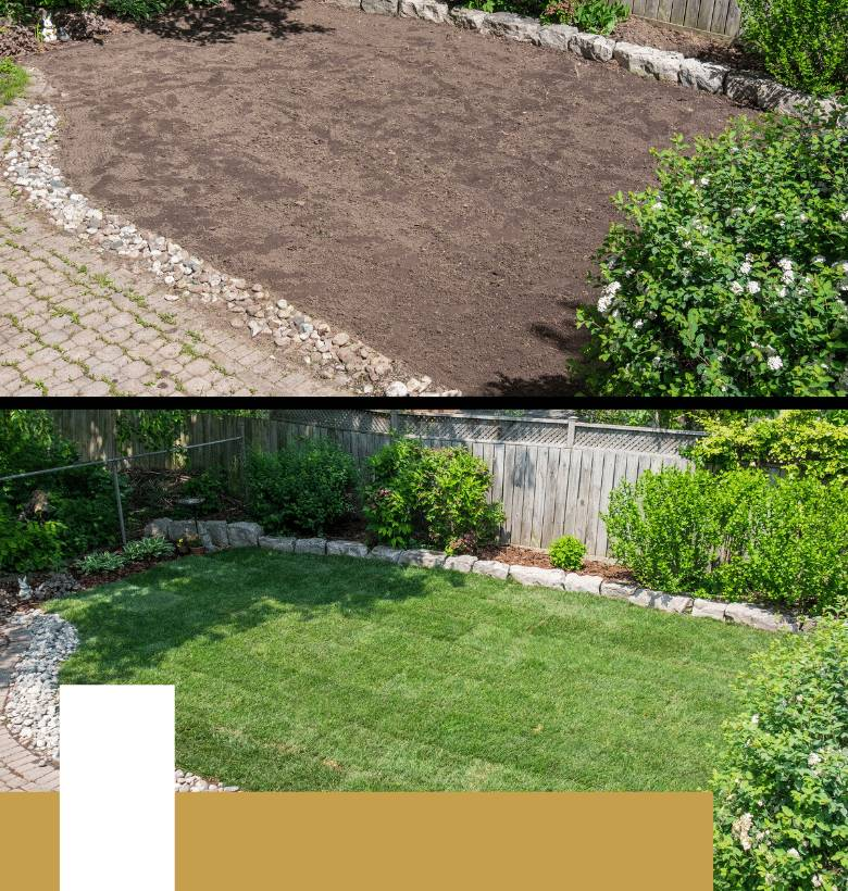 Landscape and Artificial Turf