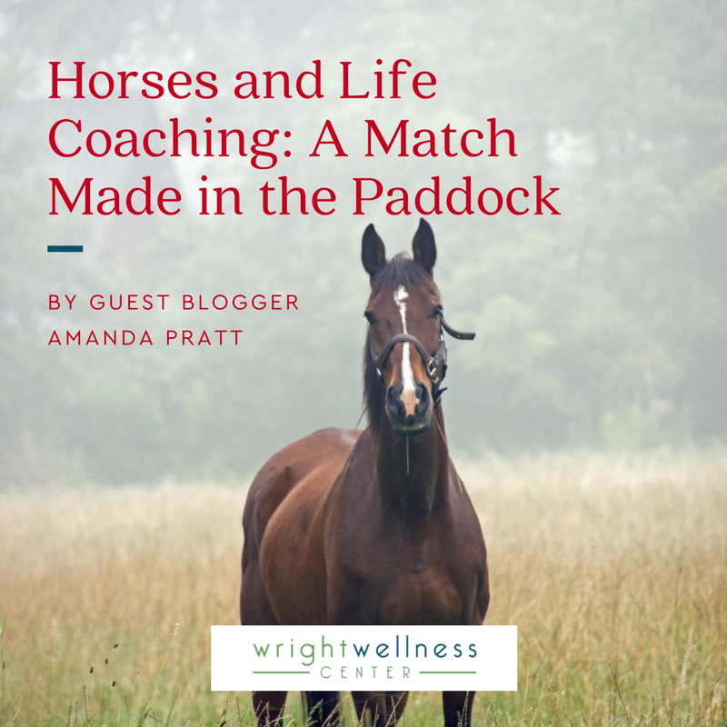 2018-Horses-and-Life-Coaching_-A-Match-Made-in-the-Paddock