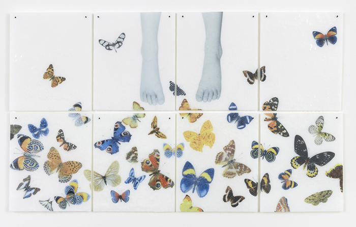 Silvia Levenson, How long do butterflies live?, 2015, courtesy the artist and lorch + seidel gallery, Berlin