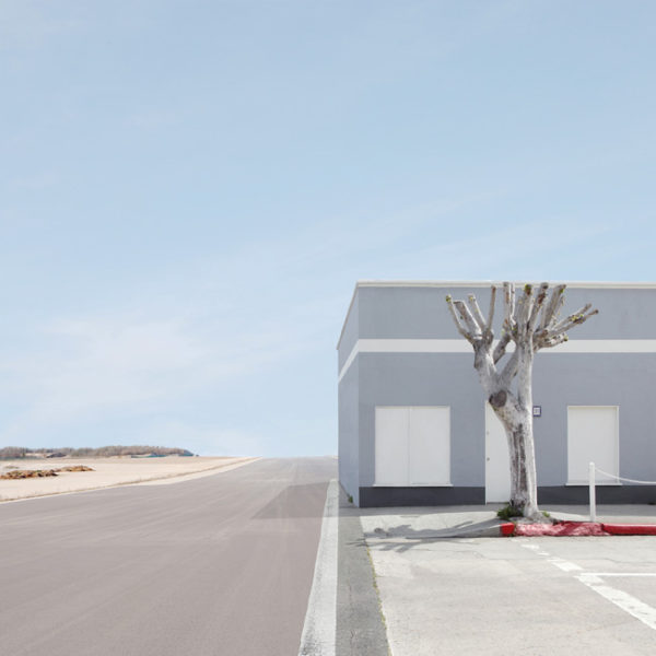 Building And Tree, 2010 44 x 44 inches, 111,7 x 111,7 cm Ed. 2/7 +2 A.P. 30 x 30 inches, 76,2 x 76,2 cm Ed. 5/7 +2 A.P. Archival pigment print