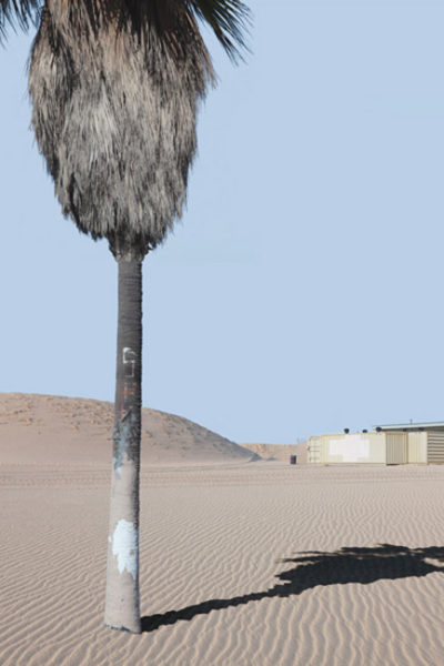 Landscape With Palm Tree, 2012 54 x 36 inches, 137,1 x 91,4 cm Ed. 1/7 +2 A.P. 36 x 24 inches, 91,4 x 60,9 cm Ed. 3/7 +2 A.P. Archival pigment print