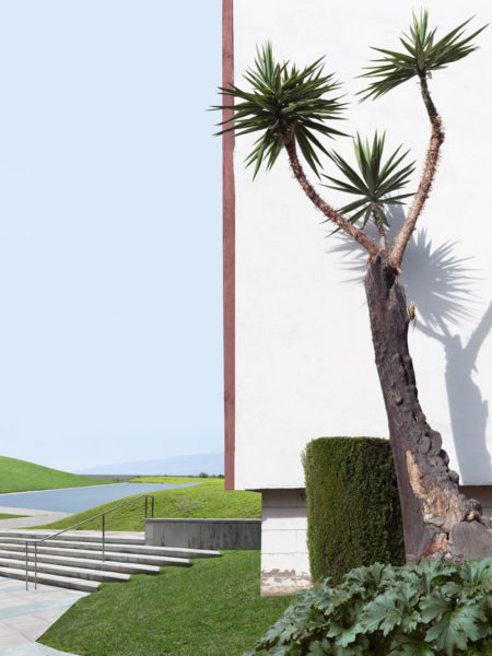 Landscape With Tree And Lawn, 2016 42 x 56 inches, 106,7 x 142,2 cm Ed. 1/7 +2 A.P. 30 x 40 inches, 76,2 x 101,6 cm Ed. 2/7 +2 A.P.