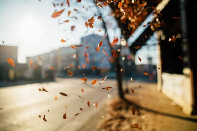 simple health tips for fall
