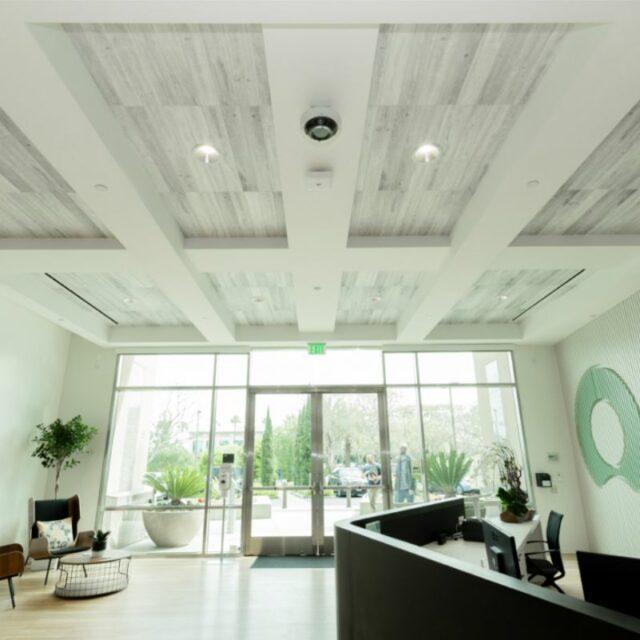 Ceiling WoodBeQuiet (1)