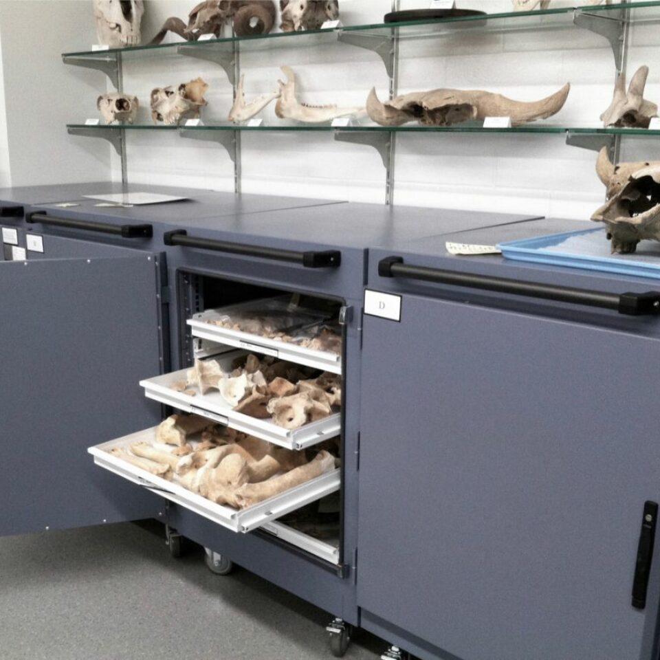 Museum Storage (8)