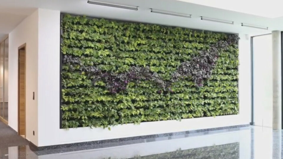 Climate Wall
