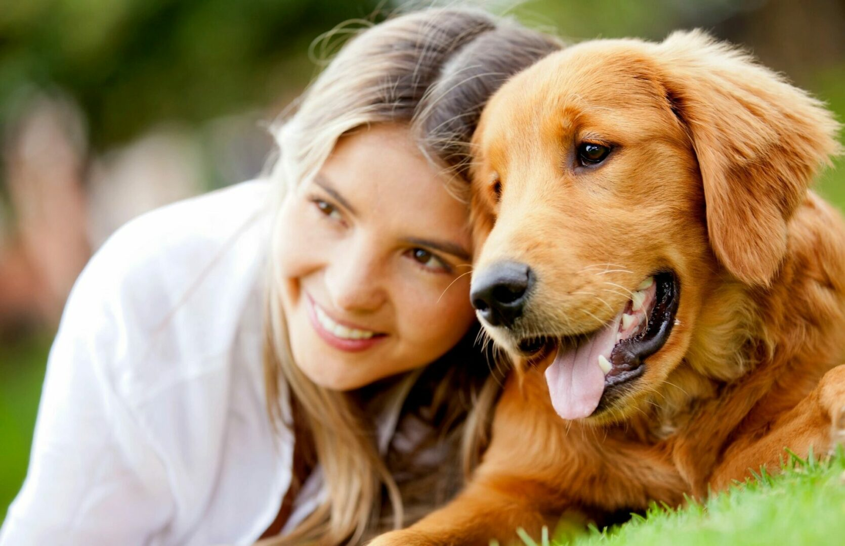 Arch Veterinary Services