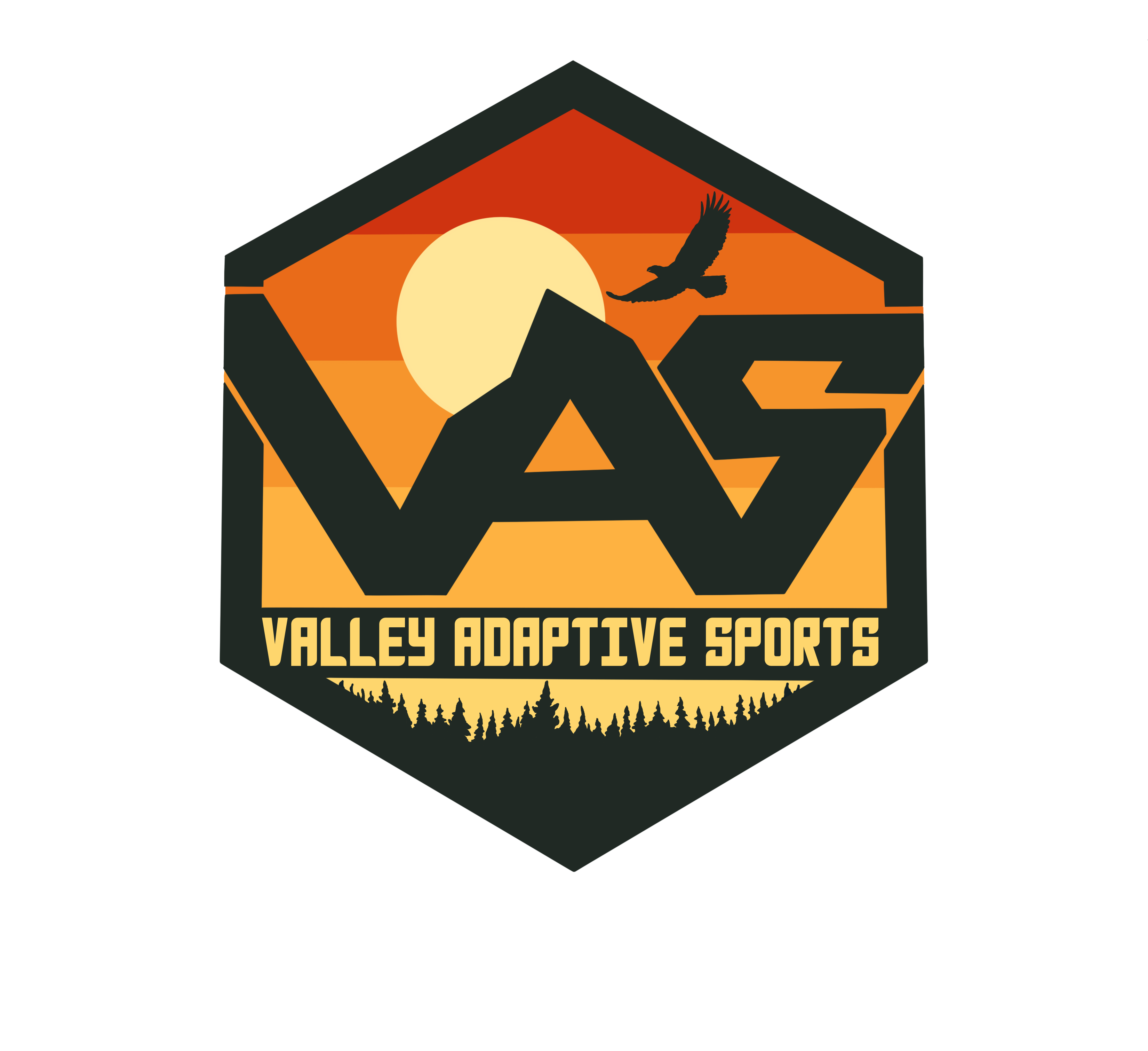 Valley Adaptive Sports
