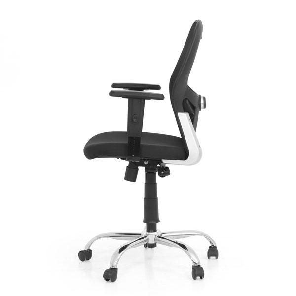 Oxnard Chairs
