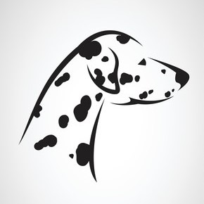 Dalmation energy logo