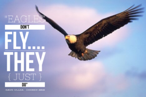 Week 11 – Eagles Don't Fly