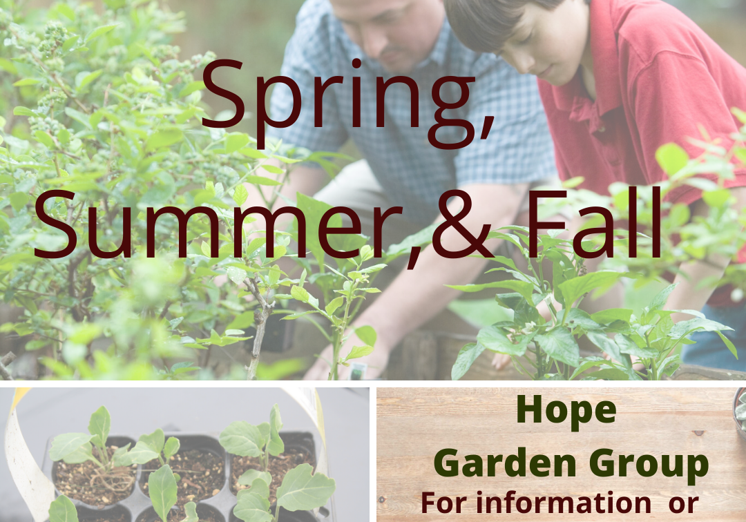 Hope Garden Group (1)