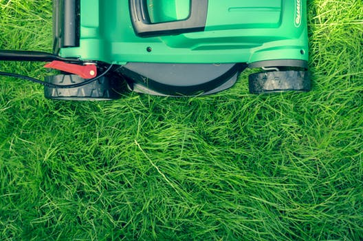 Lawn Care & Local Resources