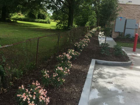 Tender Care Lawn Services   Flower Beds